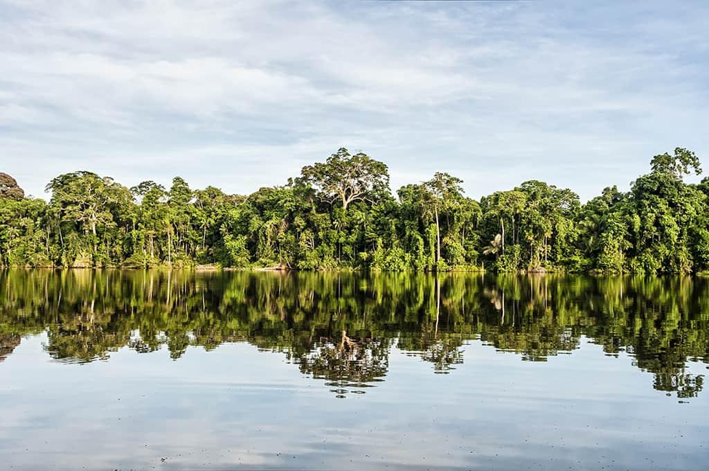 CEES Establishes the Centro de Innovación Científica Amazónica