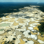 Gold Mining in Madre de Dios Causes Deforestation Rates and Mercury Levels to Climb, CINCIA Studies Show